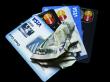 Debt problems- credit card debt litigation and debt collections